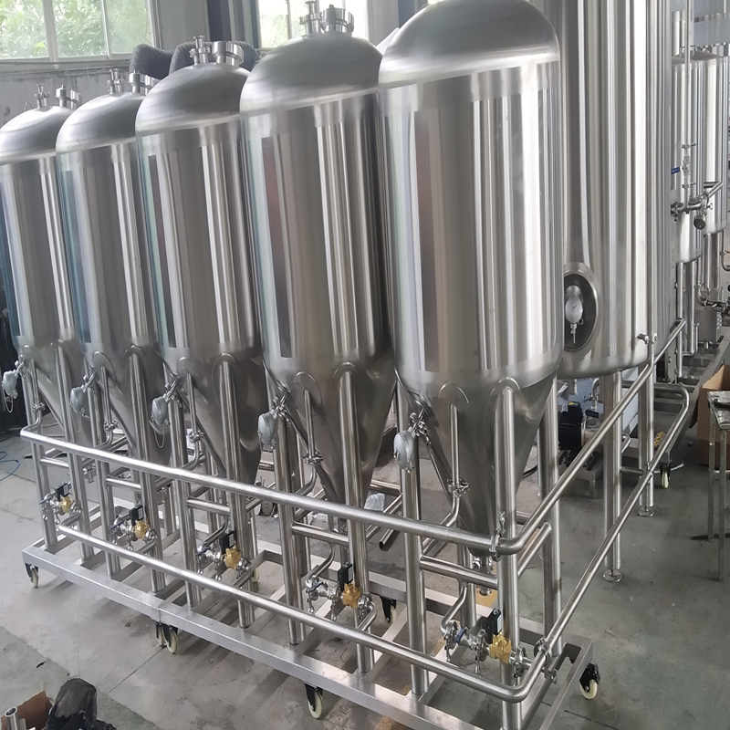 complete Auto 100L stainless steel beer brewing equipment with fermentation tanks Z08