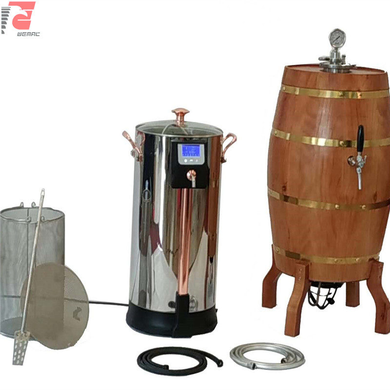 Mini beer brewery equipment and small nano brewing system for sale Chinese supplier