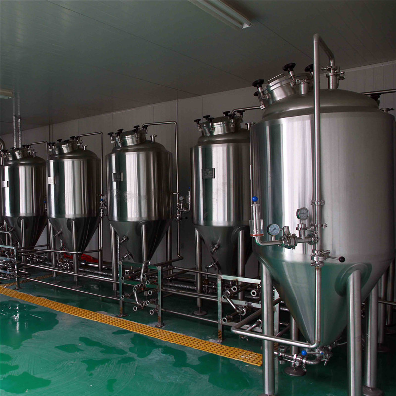 300L professional nano brewery equipment manufacture WEMAC G005
