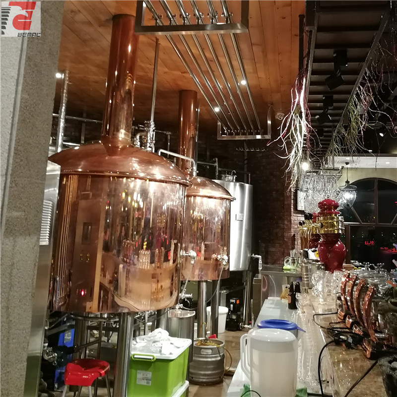 Copper beer brewing equipment manufacturers Chinese supplier WEMAC