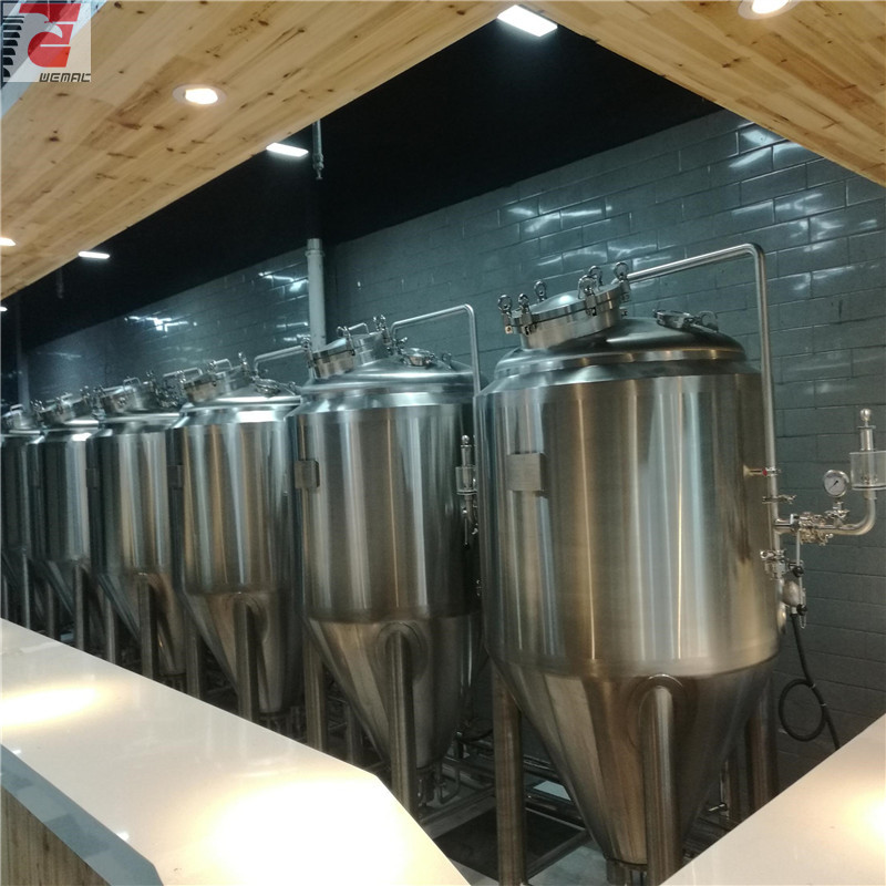 China craft beer brewing equipment for sale professional manufacturer WEMAC H025