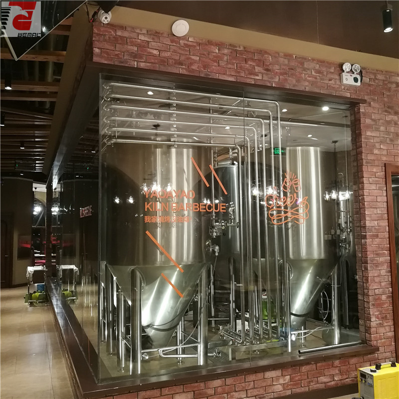 China professional craft beer brewing equipment manufacturer