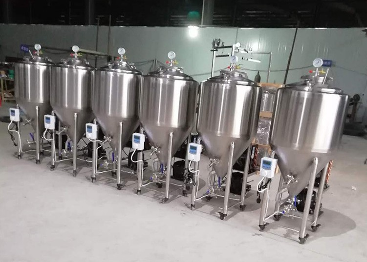 China supplier 50L professional mini beer brewing equipment of SUS304 to US 2020 W1