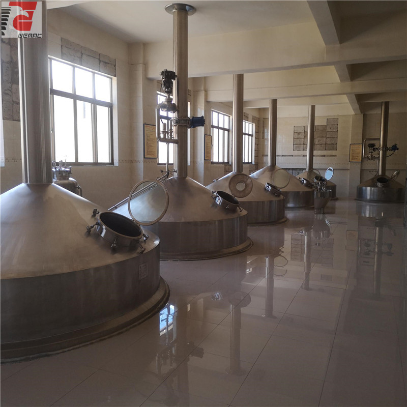Industrial brewing equipment for sale low price and cost WEMAC H028
